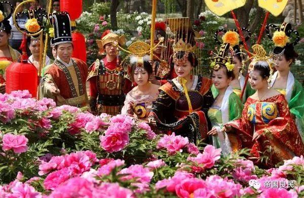 中国花协推荐牡丹为国花之为什么不是棉花呢?
