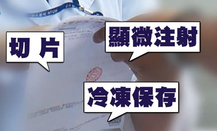 林志玲做试管婴儿可能会老得快不知她怎么想的!