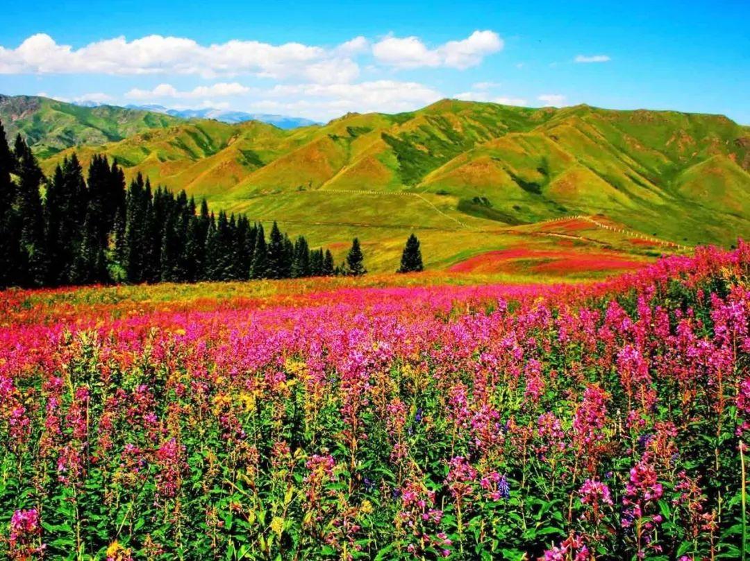 中国与哈萨克斯坦哪个富双方缔造铁一般的合作关系!威武!