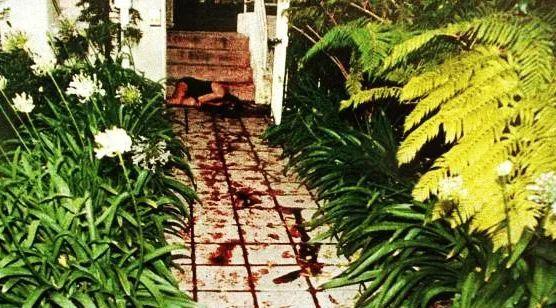 王书金被执行死刑之有多少冤屈可以被洗刷!