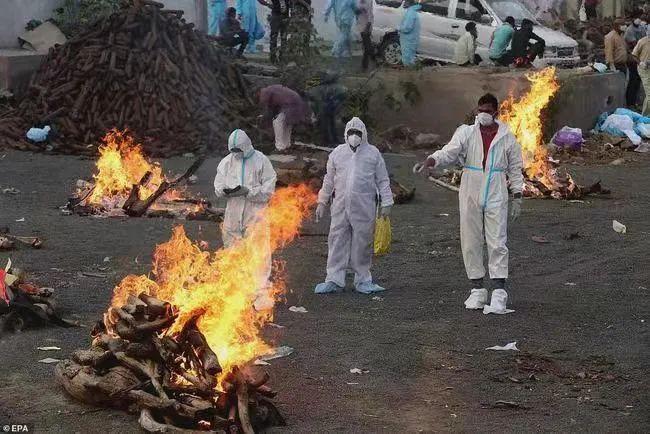印度疫情防控几乎